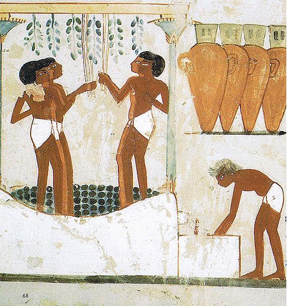 Elaboració del vi a l´Antic Egipte. Tomba de Najt, Vall dels Nobles.